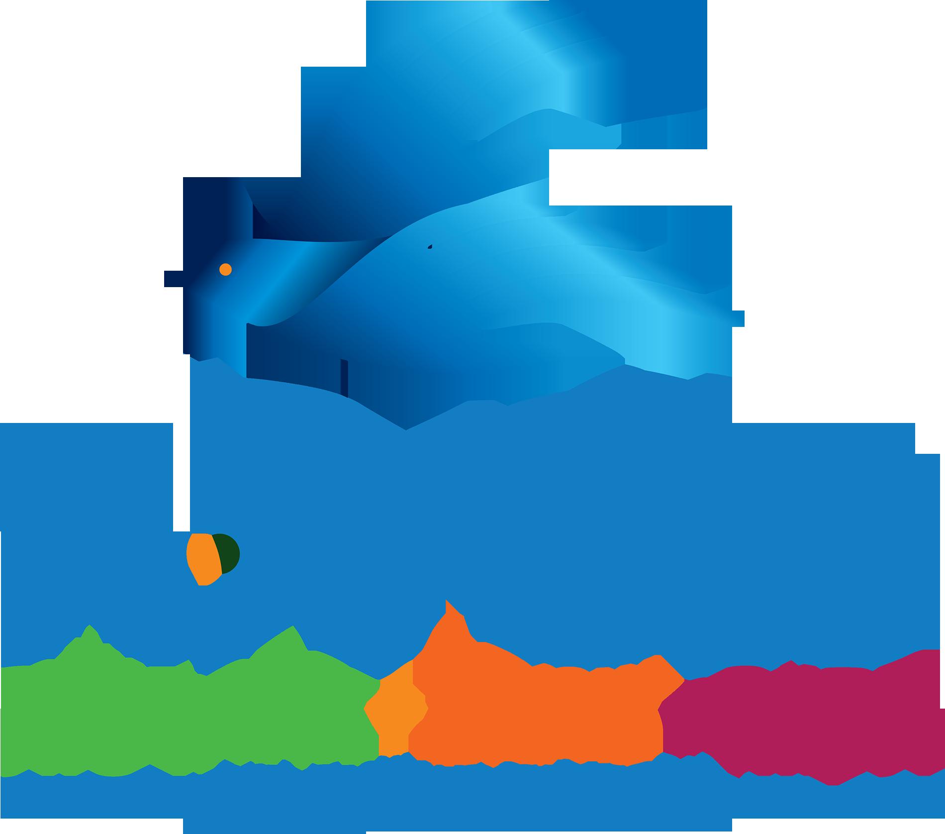 שמואל לוי